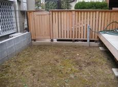 観賞用の和風庭園 施工前 写真