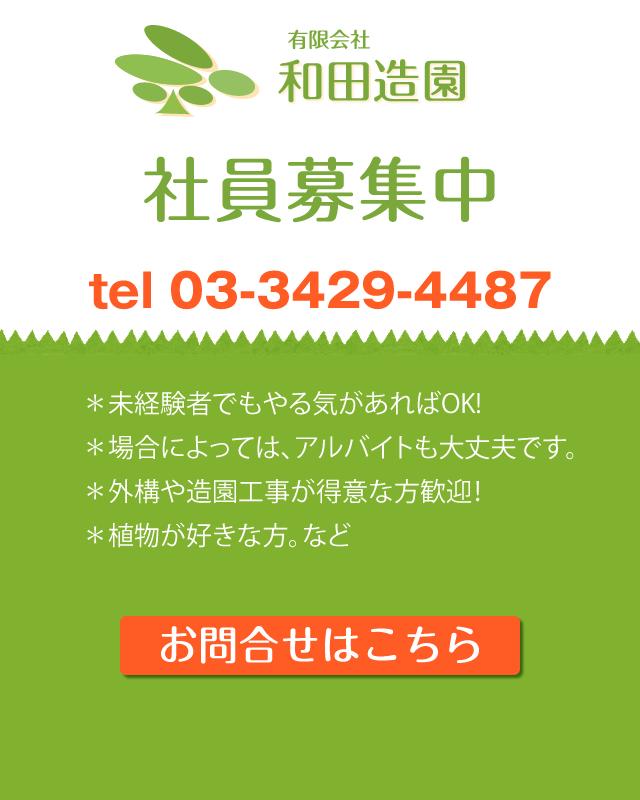 世田谷区和田造園社員募集*未経験者でもやる気があればOK! *場合によっては、アルバイトも大丈夫です。 *外構や造園工事が得意な方歓迎! *植物が好きな方。 お問合せ・ご応募は電話、メールにてご連絡ください。