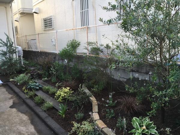 永井邸 花壇